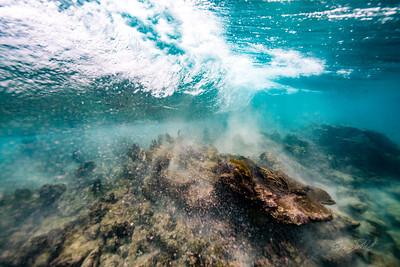 Arrecife-Francisco I-Madero-Snorkeling-Playa-del-carmen-Mexico-Gabe-DeWitt-45