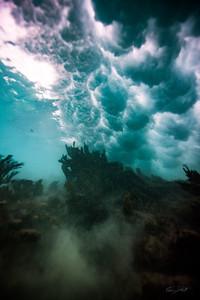 Arrecife-Francisco I-Madero-Snorkeling-Playa-del-carmen-Mexico-Gabe-DeWitt-556