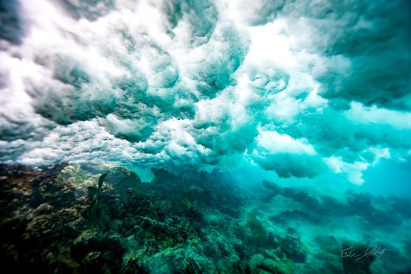 Arrecife-Francisco I-Madero-Snorkeling-Playa-del-carmen-Mexico-Gabe-DeWitt-30