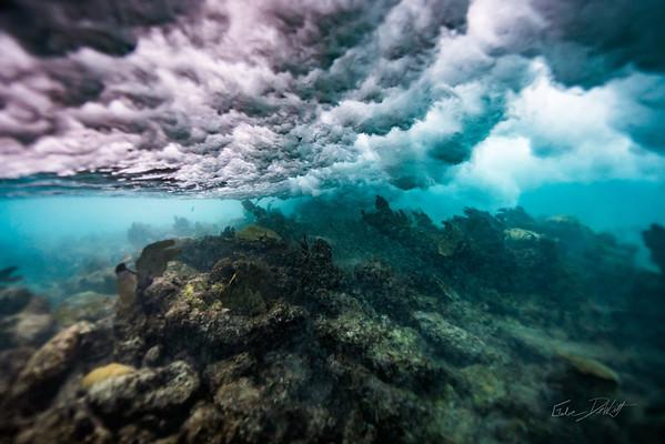 Arrecife-Francisco I-Madero-Snorkeling-Playa-del-carmen-Mexico-Gabe-DeWitt-529