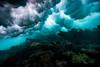 Arrecife-Francisco I-Madero-Snorkeling-Playa-del-carmen-Mexico-Gabe-DeWitt-477