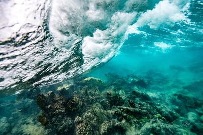 Arrecife-Francisco I-Madero-Snorkeling-Playa-del-carmen-Mexico-Gabe-DeWitt-85