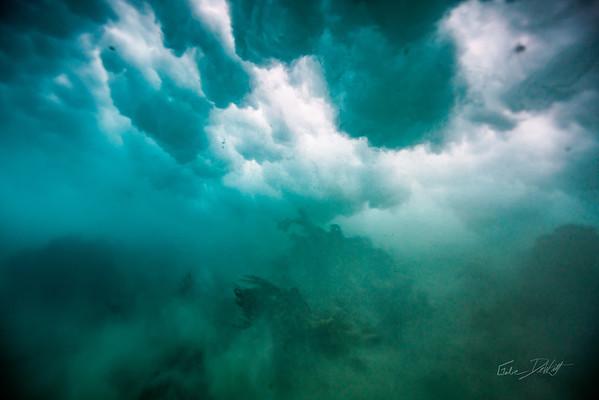 Arrecife-Francisco I-Madero-Snorkeling-Playa-del-carmen-Mexico-Gabe-DeWitt-561