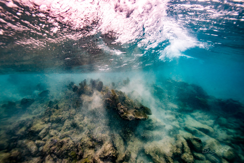 Arrecife-Francisco I-Madero-Snorkeling-Playa-del-carmen-Mexico-Gabe-DeWitt-43