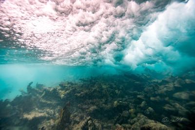 Arrecife-Francisco I-Madero-Snorkeling-Playa-del-carmen-Mexico-Gabe-DeWitt-13
