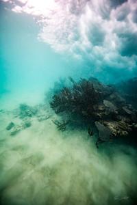 Arrecife-Francisco I-Madero-Snorkeling-Playa-del-carmen-Mexico-Gabe-DeWitt-577