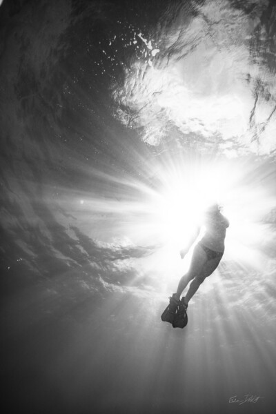 Snorkeling-Playa-del-carmen-Mexico-Arrecife-Francisco I-Madero-Gabe-DeWitt-301