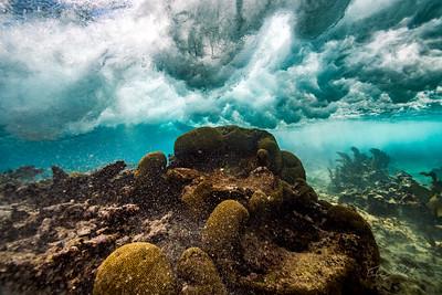 Snorkeling-Playa-del-carmen-Mexico-Arrecife-Francisco I-Madero-Gabe-DeWitt-52