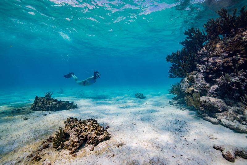 Snorkeling-Playa-del-carmen-Mexico-Arrecife-Francisco I-Madero-Gabe-DeWitt-133