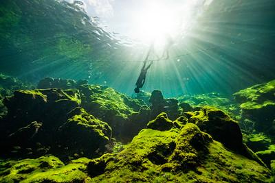 Cenote-Jardin-of-Eden-Mexico-Gabe-DeWitt-70