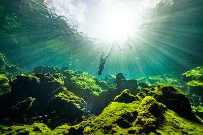 Cenote-Jardin-of-Eden-Mexico-Gabe-DeWitt-84