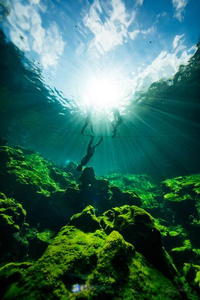 Cenote-Jardin-of-Eden-Mexico-Gabe-DeWitt-37