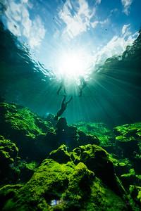 Cenote-Jardin-of-Eden-Mexico-Gabe-DeWitt-862