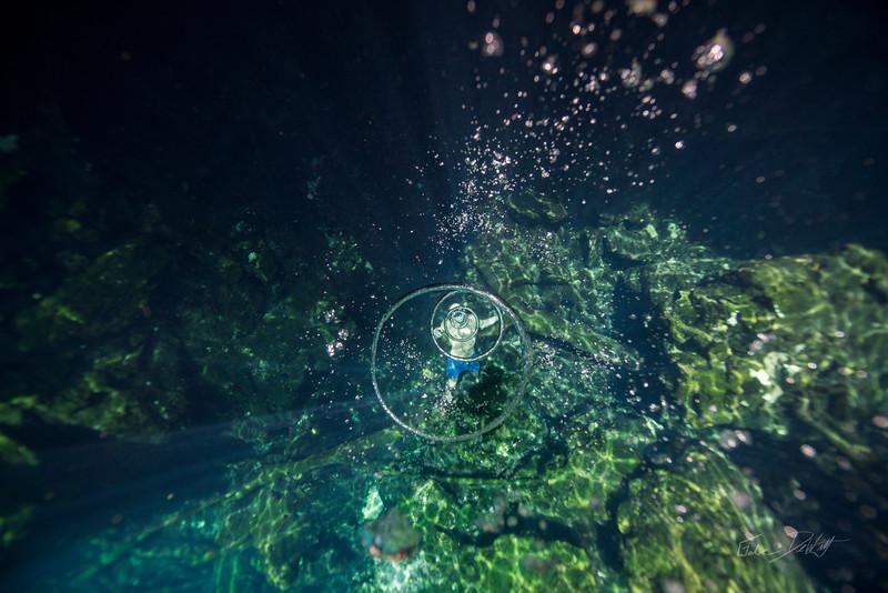 Cenote-Jardin-of-Eden-Mexico-Gabe-DeWitt-1541-2