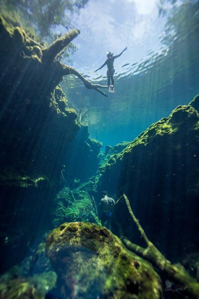 Cenote-Jardin-of-Eden-Mexico-Gabe-DeWitt-1553-2