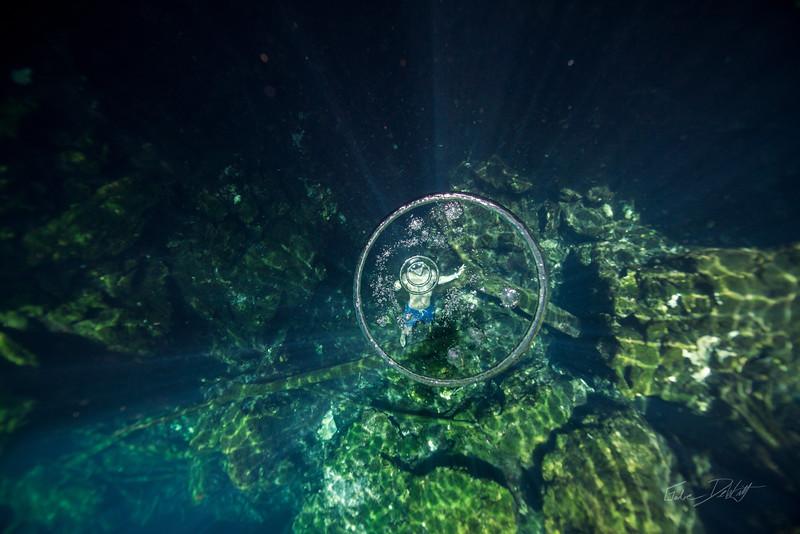 Cenote-Jardin-of-Eden-Mexico-Gabe-DeWitt-1530-2