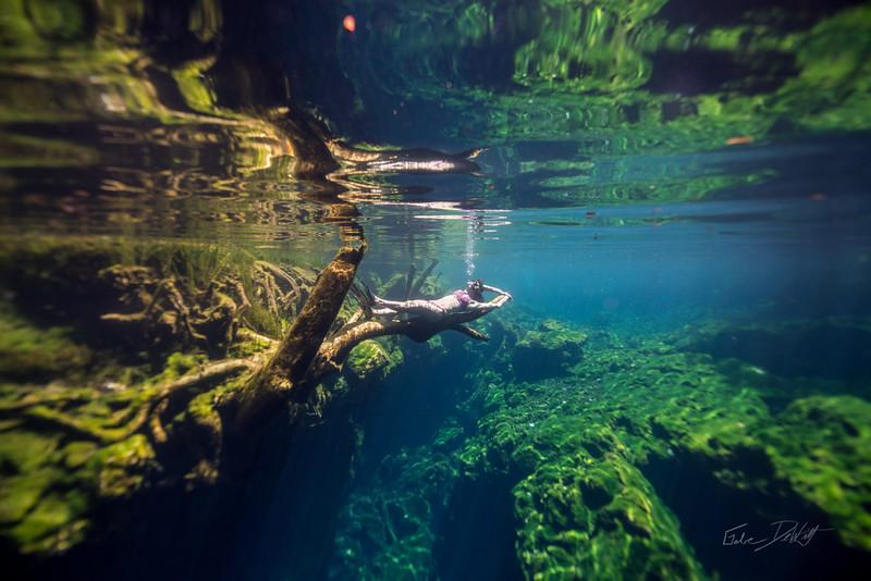 Cenote-Jardin-of-Eden-Mexico-Gabe-DeWitt-1285-2