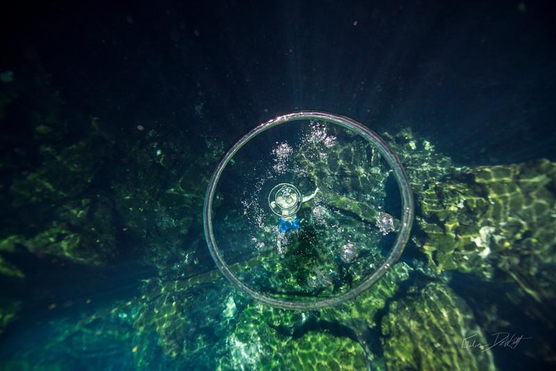 Cenote-Jardin-of-Eden-Mexico-Gabe-DeWitt-1533-2