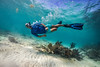 Snorkeling-Playa-del-Carmen-Mexico-Gabe-DeWitt-123