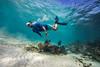 Snorkeling-Playa-del-Carmen-Mexico-Gabe-DeWitt-121