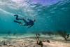 Snorkeling-Playa-del-Carmen-Mexico-Gabe-DeWitt-774