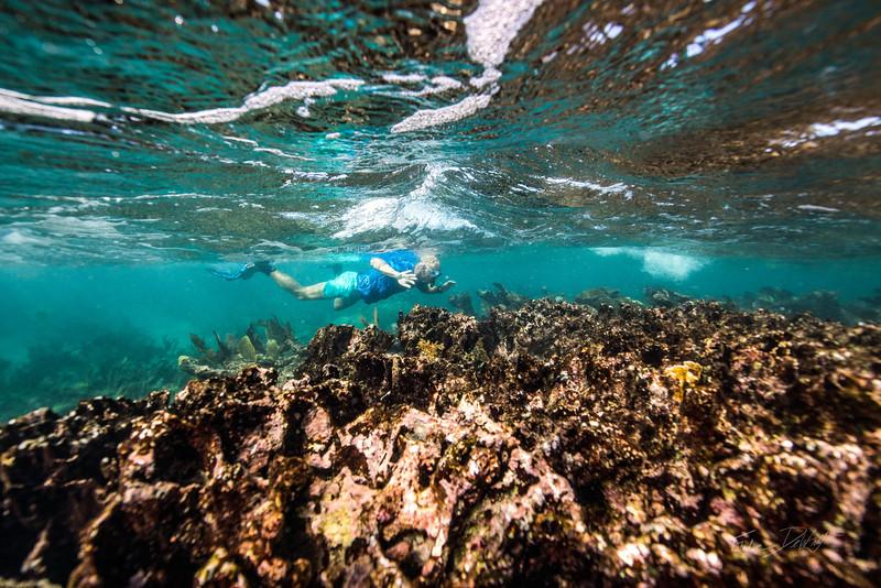 Snorkeling-Playa-del-Carmen-Mexico-Gabe-DeWitt-204