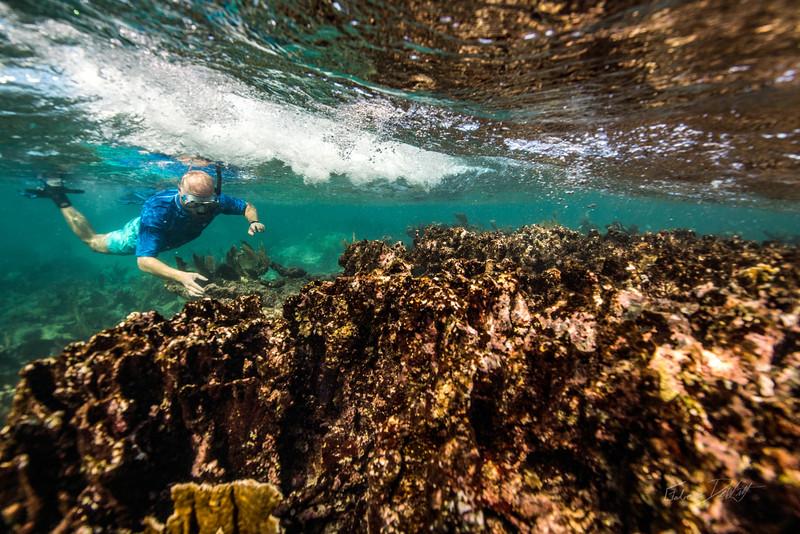 Snorkeling-Playa-del-Carmen-Mexico-Gabe-DeWitt-216