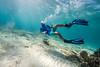 Snorkeling-Playa-del-Carmen-Mexico-Gabe-DeWitt-127