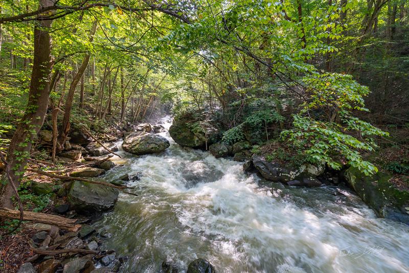 Creek-Boating-Deckers-Creek-West-Virginia-fall-2018-36