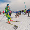 2018 Loppet Festival at Theodore Wirth Park and Loppet Village on 27 January 2018
