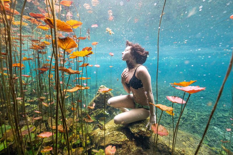 Cenote-Chikin-Ha-Mexico-2019-882