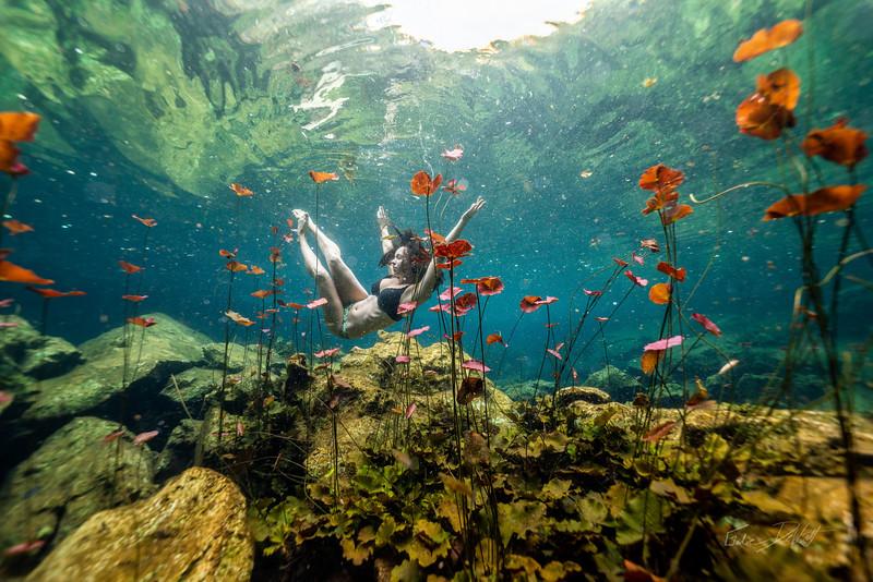 Cenote-Chikin-Ha-Mexico-2019-466