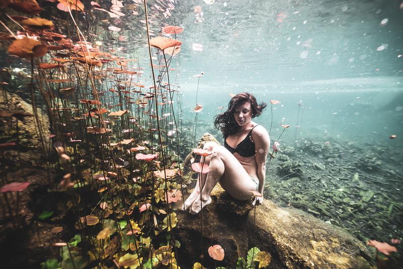 Cenote-Chikin-Ha-Mexico-2019-535-2