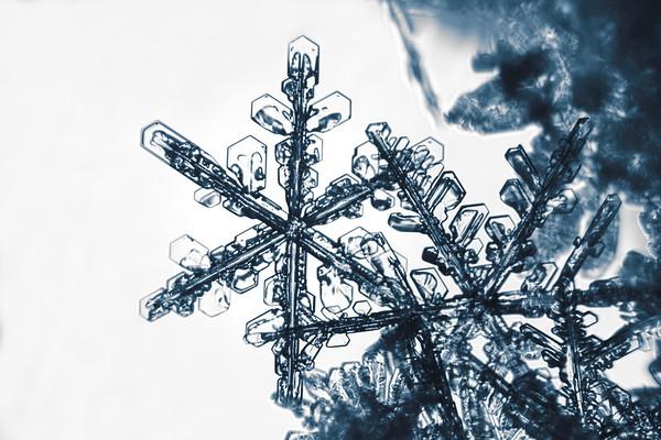 Snöflinga i närbild - Extreme close up of a snowflake