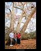 Karen's Family Tree
