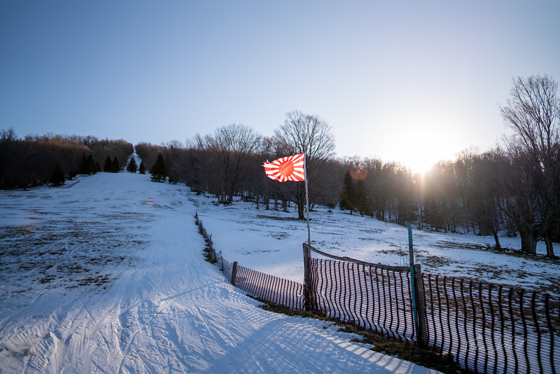 Whitegrass-Crosscountry-Skiing-Canaan-WV-2019-201