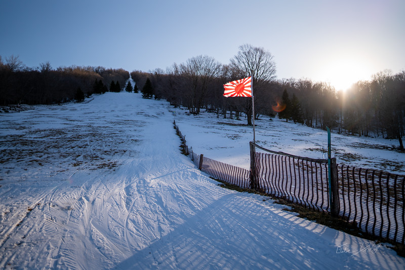 Whitegrass-Crosscountry-Skiing-Canaan-WV-2019-210