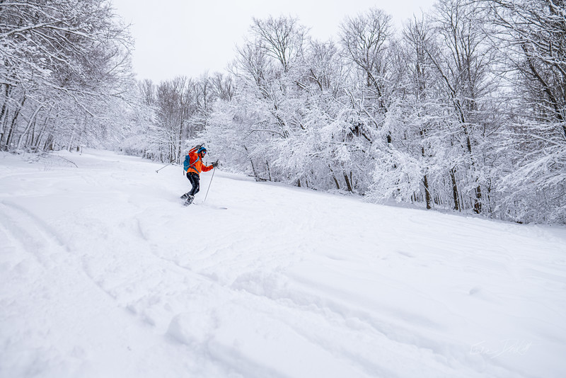 Whitegrass-Crosscountry-Skiing-Canaan-WV-March-2019-8