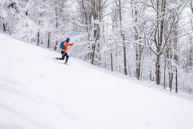 Whitegrass-Crosscountry-Skiing-Canaan-WV-March-2019-13