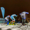 2020 Loppet Festival  Friday Night Sprints at The Trailhead in Theodore Wirth Park