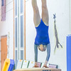 Minneapolis Gymnastics Meet - North, Edison, Henry, Roosevelt, South, Washburn, South and Southwest at North Star Gymnastics Gym on January 8, 2020