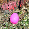 WARREN DILLAWAY / Star Beacon<br /> A LONE Easter egg awaits a happy child during the Geneva Easter Fest on Saturday at Memorial Field in Geneva.