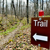 SIGNS MARK a trail at Morgan Swamp.