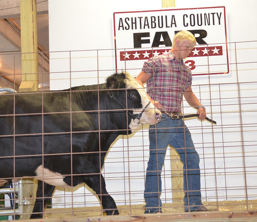 WARREN DILLAWAY / Star Beacon<br /> JARED PETRO,  16, of Geneva, shows his steer during the Ashtabula County Fair Market Animal sale on Saturday at the fairgrounds in Jefferson.