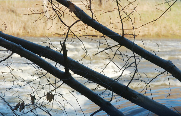 WARREN DILLAWAY / Star Beacon<br /> WATER FLOWS along the Grand River behind trees at the Harpersfield Metropark near the Harpersfield Covered Bridge on Thursday.