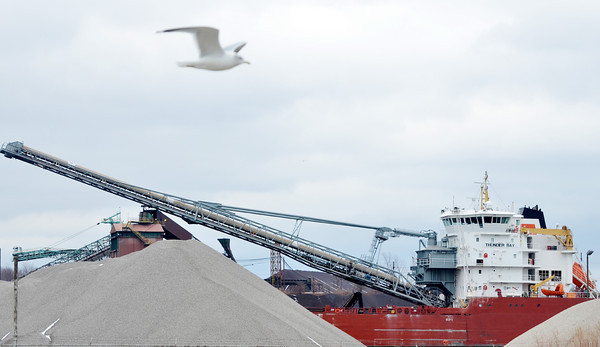 WARREN DILLAWAY / Star Beacon<br /> A SEAGULL flies by as the Thunder Bay unloads in Conneaut Harbor on Monday afternoon.