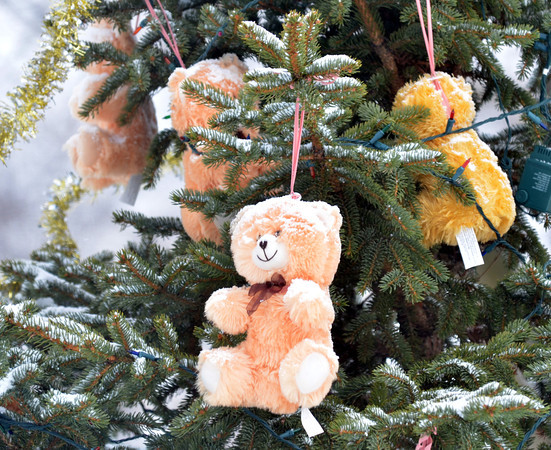 WARREN DILLAWAY / Star Beacon<br /> A SNOW covered teddy bear hangs off a Christmas tree in Lt. Kevin Cornelius Memorial Park in Ashtabula.