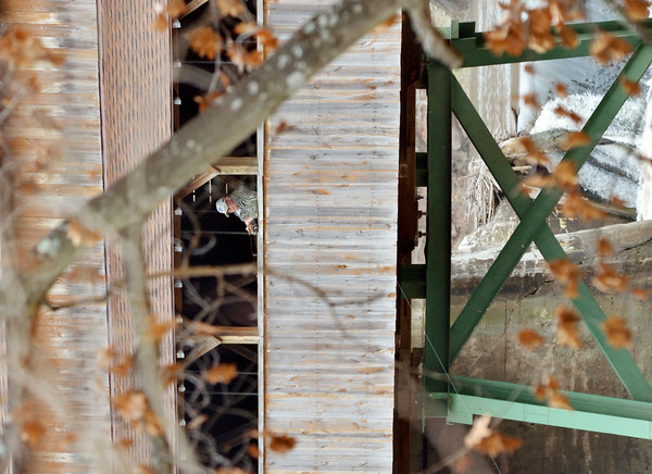 WARREN DILLAWAY / Star Beacon<br /> A FEW leaves remain on trees as a fisherman tries his luck at the Harpersfield Covered Bridge on Thursday.