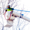 WARREN DILLAWAY / Star Beacon<br /> CREWS FROM Nelson Tree Service trim trees along West Eighth Street in Ashtabula on Friday afternoon.