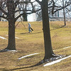 WARREN DILLAWAY / Star Beacon<br /> BRIAN BAIRD of Geneva plays a round of disc golf Monday afternoon at Lake Shore Park in Ashtabula Township.